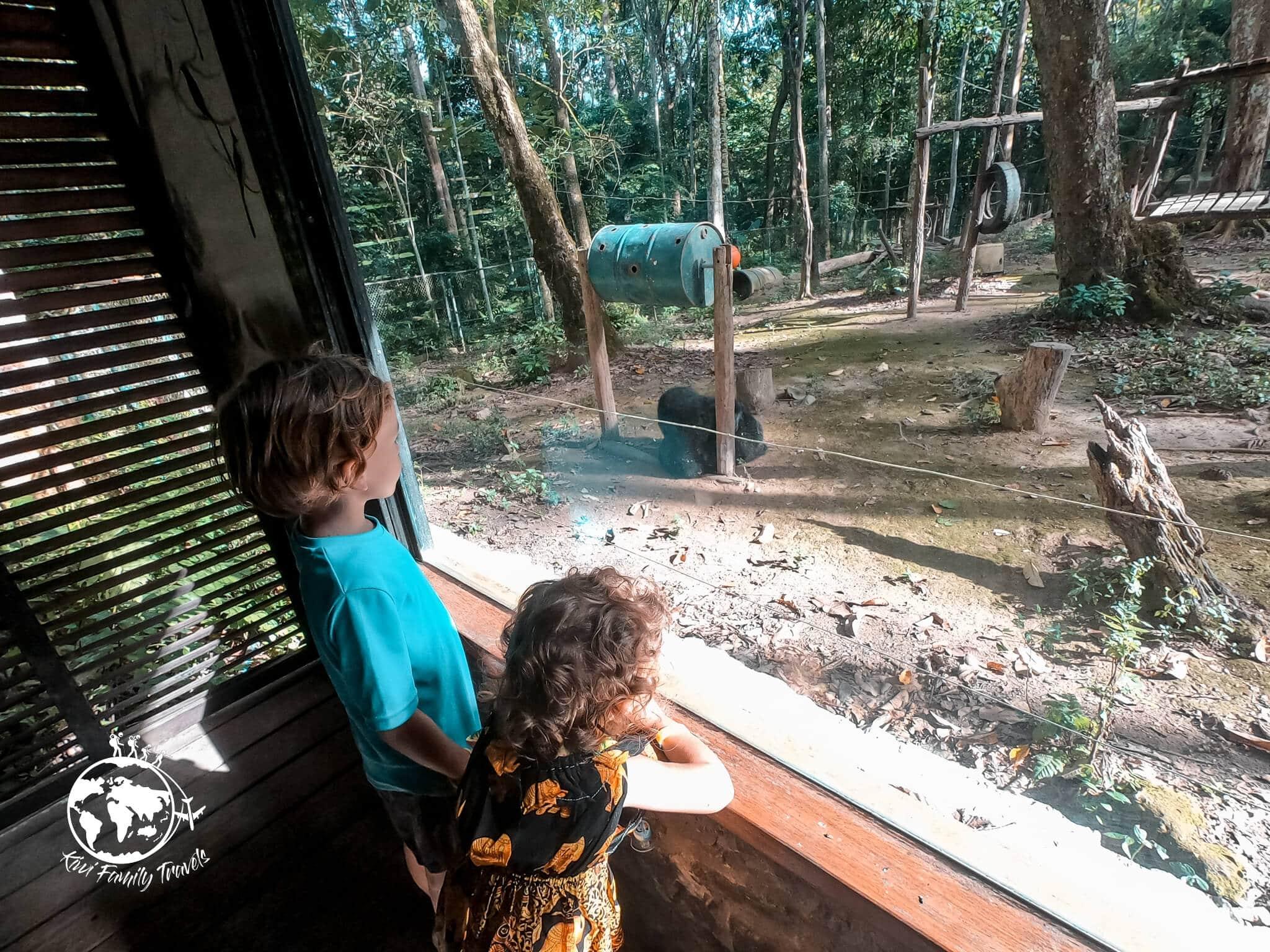 Logan et Théa regardant les ours
